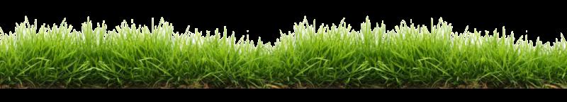 Jardinier paysagiste chlorophylle entretien des stades for Jardinier paysagiste herault